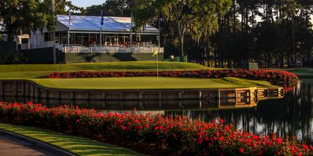 TPC Sawgrass Hole 17 Photo 3 Wide