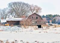 Winter Behind the Barn