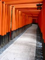 Gates to Fushimi Inari