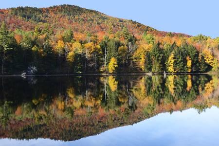 Palmer Pond North Hudson Adirondacks 0693