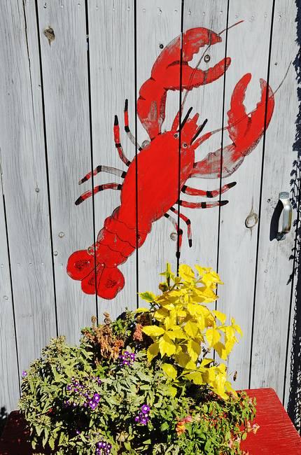 Lobster Shack Door Maine 9621
