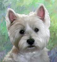 PORTRAIT OF A WESTIE