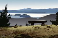 TURTLEBACK BENCH ORCAS ISLAND VISTA