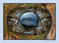 EYE OF TURTLEBACK MOUNTAIN ON ORCAS ISLAND