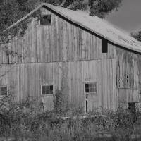 Old Barn in Black and White by Karen Adams