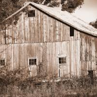 Old Barn in Sepia by Karen Adams