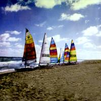 Seven Catamarans on Ft Lauderdale Beach