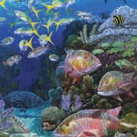 """""""Mutton Reef"""" by Bluemarlin"""