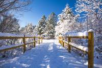 Snow Covered Walking Bridge