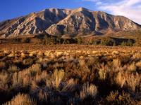 Wheeler Crest, Eastern Sierra, California