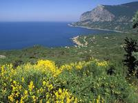 South Coast, Ukrainian Riviera on the Black Sea, C