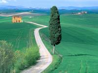 Country Road, Tuscany, Italy