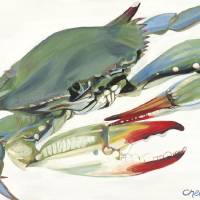 """Blue Crab"" by Chelseascott"