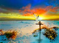 christian art cross dove gods love peace sunset