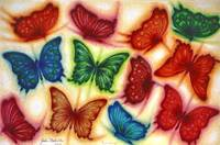 A 'Rainbow' of Butterflies