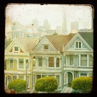 Painted Ladies TTV 12x12