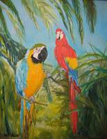 366 Two Macaws