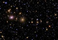 The Perseus Galaxy Cluster