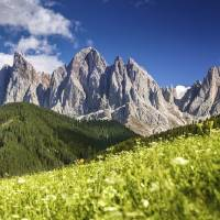 """Panoramic view of Dolomite Alps and forest, Northe"" by stocktrekimages"