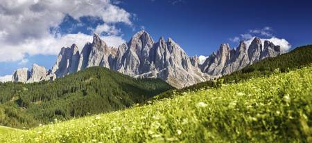 Panoramic view of Dolomite Alps and forest, Northe