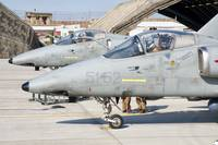 Italian Air Force AMX fighter aircraft are prepare