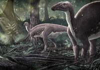 Mantellisaurus atherfieldensis dinosaurs in a preh