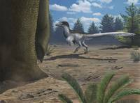 A deinonychosaur leaves tracks across a Cretaceous