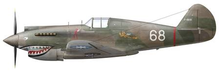 Illustration of a Curtiss P40-C Warhawk of the Fly