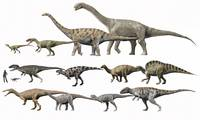 Prehistoric era dinosaurs of Niger drawn to scale