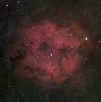 The large IC 1396 emission nebula complex