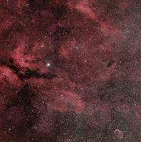 The Sadr region with the Crescent Nebula