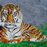 The Tiger Prints & Posters