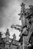 Gargoyle in black and white