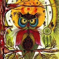 """Boho Owl"" by Runesha"