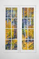 Old 16 Pane White Window Colorful Aspen View