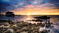 Shipwreck Sea Sunrise-Barnacle Covered Shore Art