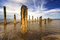 Remnants Of Moorings In Water, Humberside, England