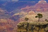 South Rim Of Grand Canyon, Arizona, Elevated View