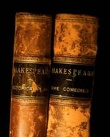 Shakespeare Leather Bound Books