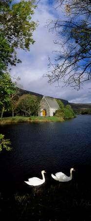 Swans near Chapel At Gougane Barra, County Cork, I