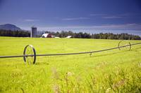 Rolling irrigation sprinkler on hay field w/farm b