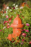 Fire hydrant and flowers Kodiak Island Southwest A