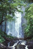 Hawaii, Waterfalls Cascading Down Rocky Cliff, Tre