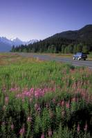 Automobiles on Seward Highway in Kenai Mountains