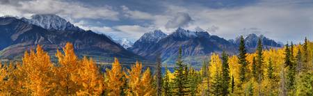 Panoramic View Of The Fall Foliage And Snowcapped