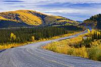 Alaska Highway Near Beaver Creek And Fall Colours,