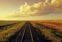 Railway Through Farmland, Near Carey, Manitoba, Ca