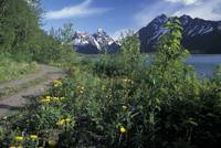 Scenic View in Autumn of Eklutna Lake and Trail