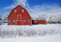 Red Barn, Winter, Grande Pointe, Manitoba, Canada