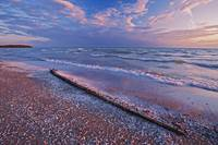Pebbles And Shells On Shoreline Of Lake Ontario, O